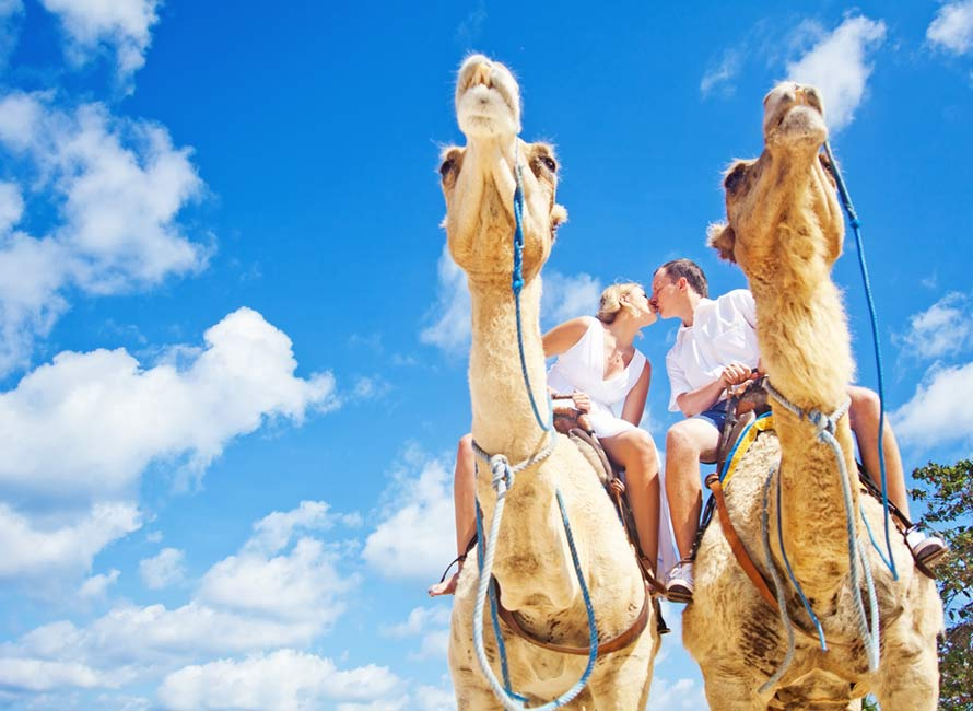 Romantic Camel Ride, Luxury Honeymoon Packages, Egypt Travel