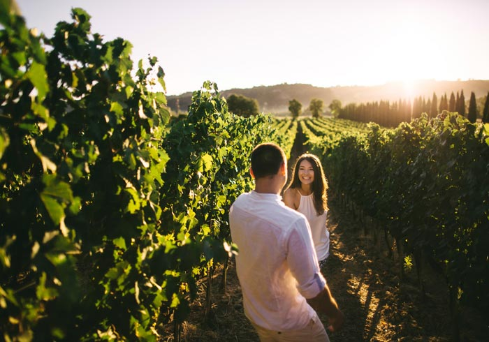 Tuscany Vineyard – Tuscany honeymoon tours with Travelive, romantic luxury packages